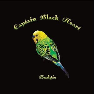 "Captain Black Heart – ""Budgie"" Review 